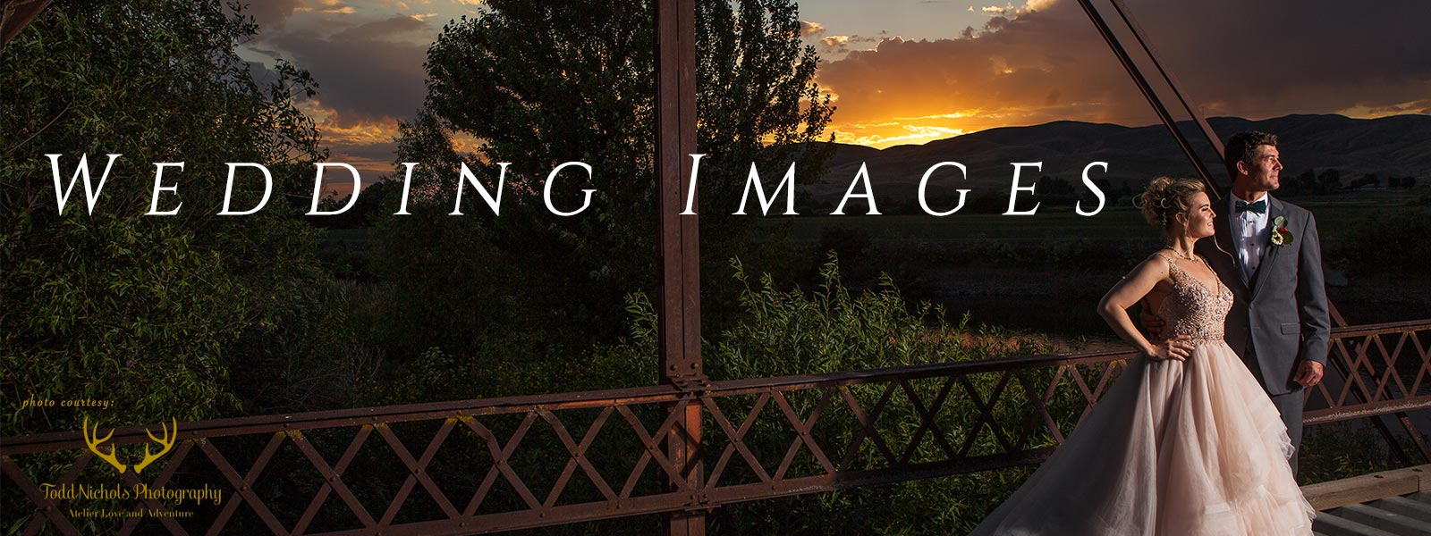Image Galleries of Weddings at the Lazy Bear Ranch